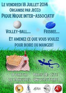 Actu Pique Nique Volley-ball